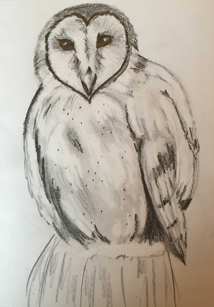 Cynthia Dale Painting Owl